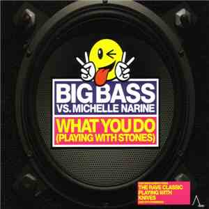 Big Bass vs. Michelle Narine - What You Do (Playing With Stones) mp3 download