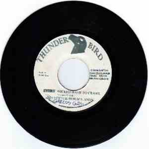 Jah Stitch / Horace Andy - Every Wicked Have To Crawl mp3 download